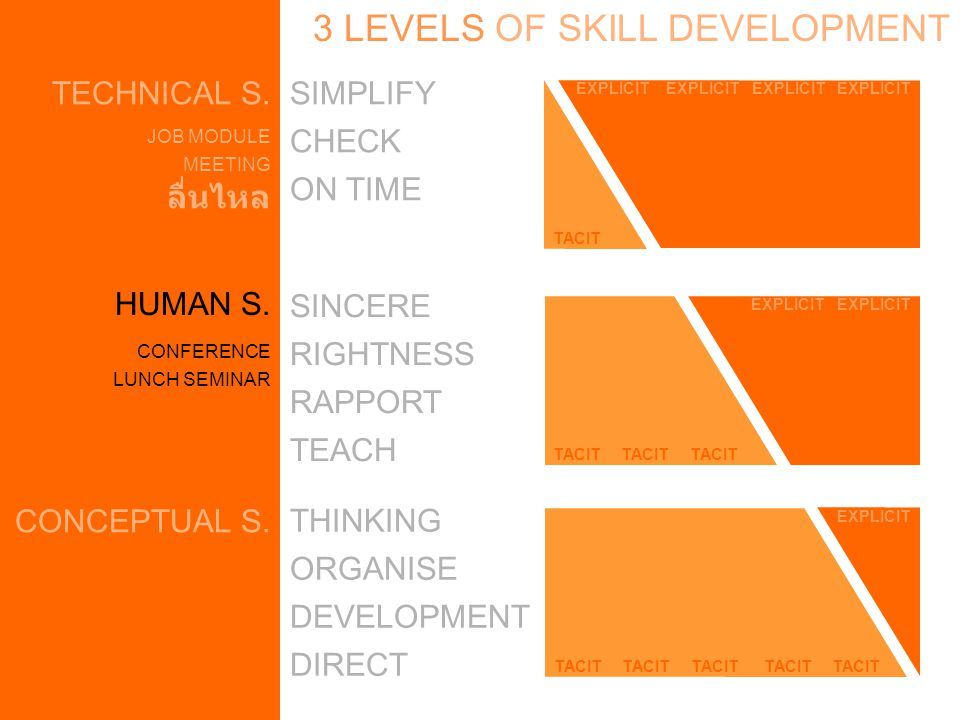 HUMAN S. TECHNICAL S. 3 LEVELS OF SKILL DEVELOPMENT CONCEPTUAL S.