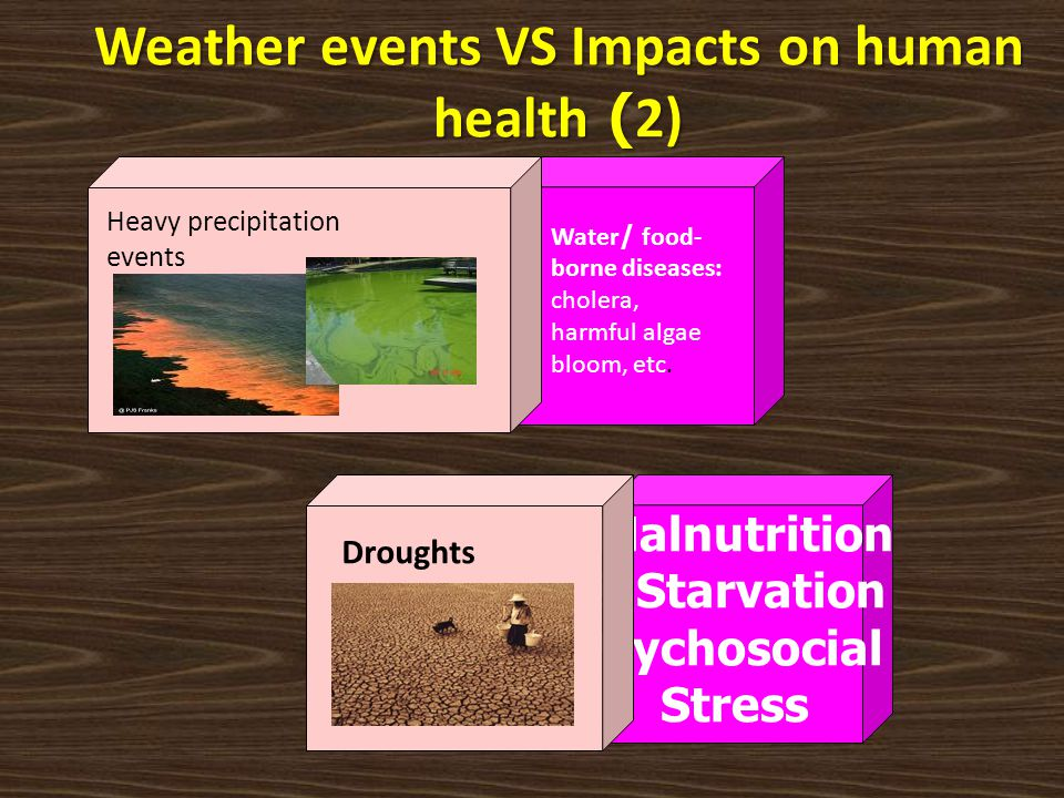 Water/ food- borne diseases: cholera, harmful algae bloom, etc. Heavy precipitation events Malnutrition & Starvation Psychosocial Stress Droughts Weat