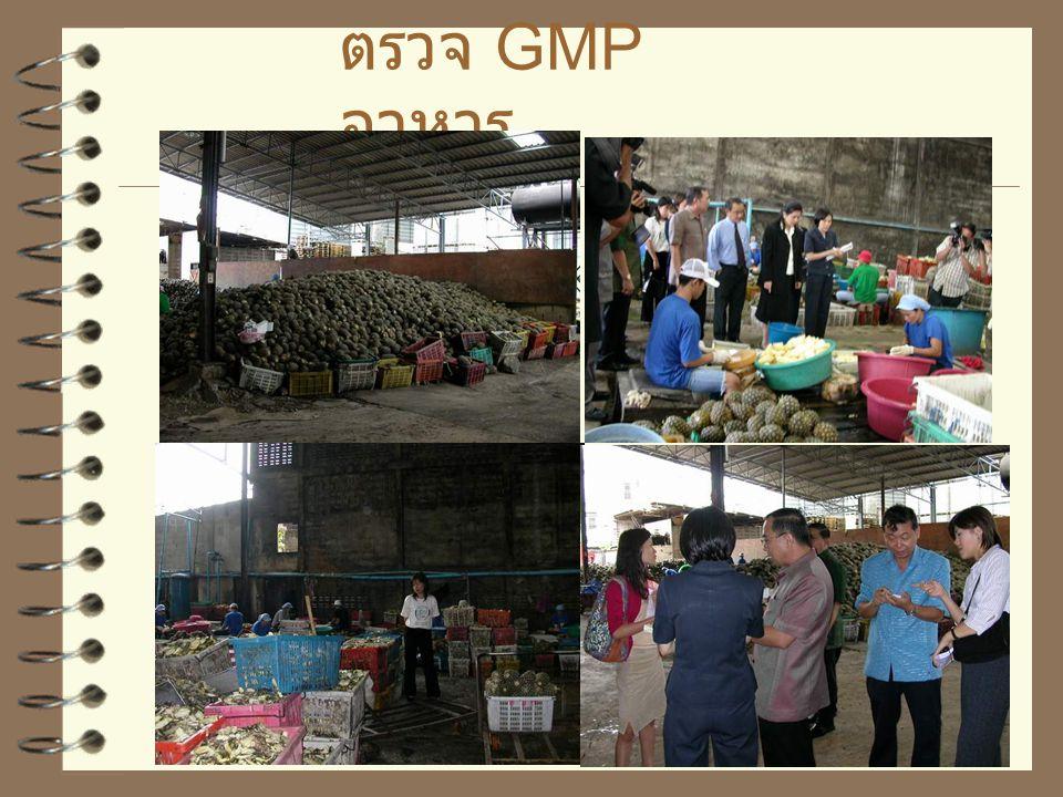 ตรวจ GMP สถานที่ ผลิตอาหาร ข้อมูลถึง 25 สิงหาคม 2546