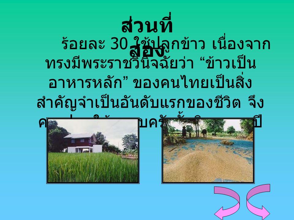 """ส่วนที่ สอง ร้อยละ 30 ใช้ปลูกข้าว เนื่องจาก ทรงมีพระราชวินิจฉัยว่า """" ข้าวเป็น อาหารหลัก """" ของคนไทยเป็นสิ่ง สำคัญจำเป็นอันดับแรกของชีวิต จึง ควรปลูกให้"""
