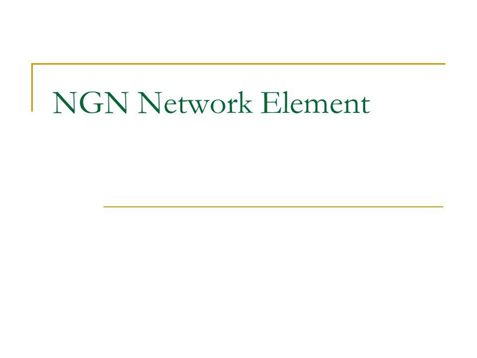 NGN Network Element