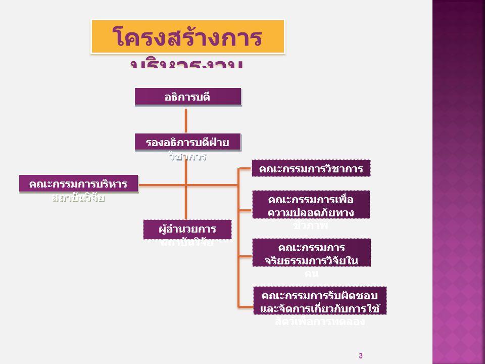 3 โครงสร้างการ บริหารงาน คณะกรรมการบริหาร สถาบันวิจัย คณะกรรมการเพื่อ ความปลอดภัยทาง ชีวภาพ คณะกรรมการ จริยธรรมการวิจัยใน คน คณะกรรมการวิชาการ ผู้อำนวยการ สถาบันวิจัย คณะกรรมการรับผิดชอบ และจัดการเกี่ยวกับการใช้ สัตว์เพื่อการทดลอง รองอธิการบดีฝ่าย วิชาการ อธิการบดี