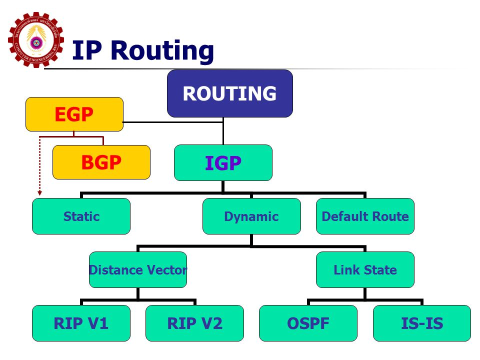 IP Routing IGP StaticDynamic Distance Vector RIP V1RIP V2 Link State OSPFIS-IS Default Route EGP BGP ROUTING