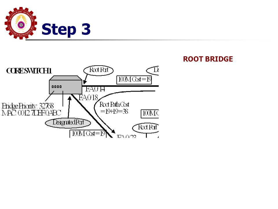 Step 3 ROOT BRIDGE