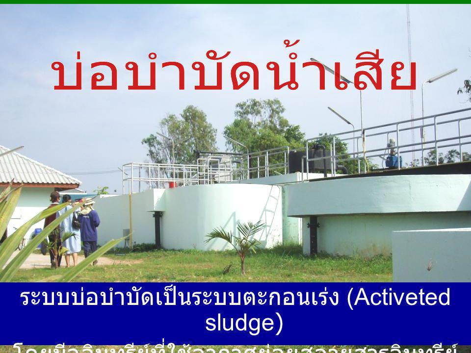 ระบบบ่อบำบัดเป็นระบบตะกอนเร่ง (Activeted sludge) โดยมีจุลินทรีย์ที่ใช้อากาศย่อยสลายสารอินทรีย์ ในน้ำเสีย