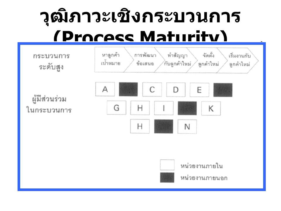 วุฒิภาวะเชิงกระบวนการ (Process Maturity)