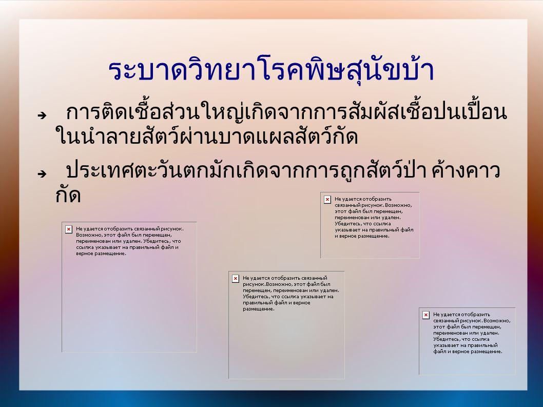 ประเทศไทยมักเกิดจากสุนัขกัด การติดเชื้อวิธีอื่น เช่น การปลูกถ่ายอวัยวะ ทั่วโลกมีการเสียชีวิตปีละ 30,000 รายทุกปี ประเทศไทยมีผู้เสียชีวิตประมาณ 30-70 รายต่อปี ผู้ป่วยส่วนใหญ่มักเป็นเด็ก ( ร้อยละ 40)