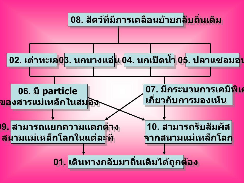 เลข กำกับ ข้อความที่กำหนด ร่างรหัสคำตอบที่จะ ระบายในกระดาษคำตอบ 01 เดินทางกลับมาถิ่นเดิมได้ ถูกต้อง 02 เต่าทะเล 03 นกนางแอ่น 04 นกเป็ดน้ำ 05 ปลาแซลมอน 06 มี particle ของสาร แม่เหล็กในสมอง 07 มีกระบวนการเคมีพิเศษ เกี่ยวกับการมองเห็น 08 สัตว์ที่มีการเคลื่อนย้ายกลับ ถิ่นเดิม 09 สามารถแยกความแตกต่าง สนามแม่เหล็กโลกในแต่ละ ที่ 10 สามารถรับสัมผัสจาก สนามแม่เหล็กโลก 99H 06D 02D 01A 09A10A 04D05D 03D 07D 06D07D 06D07D 06D07D 09A10A