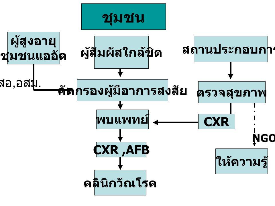 ชุมชน ผู้สูงอายุ ชุมชนแออัด ผู้สัมผัสใกล้ชิด สถานประกอบการ คัดกรองผู้มีอาการสงสัย ตรวจสุขภาพ CXR,AFB CXR พบแพทย์ คลินิกวัณโรค สอ, อสม. ให้ความรู้ NGO