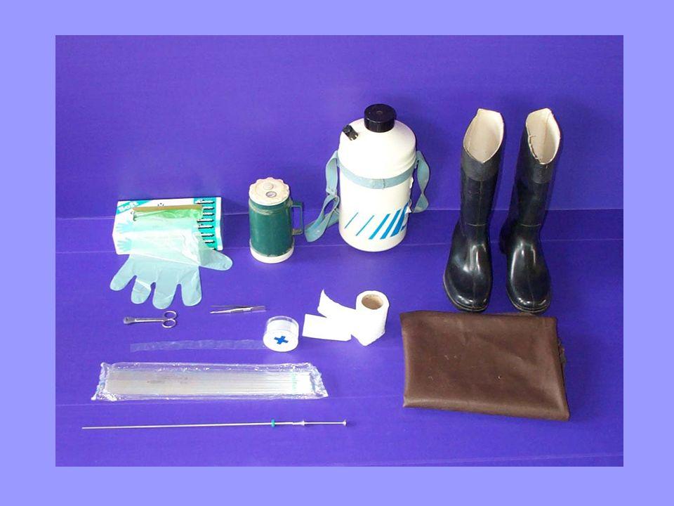 แซนิตารีชีท เป็นถุงพลาสติกแคบยาว ใช้สวมทับพลาสติกชีทอักชั้นหนึ่ง แต่ละชิ้นกว้างประมาณ 2.5 เซนติเมตร ยาวประมาณ 47 เซนติเมตร ซึ่งความยาวจะ ใกล้เคียงกับความยาวของปืนฉีดน้ำเชื้อ ปลายด้านหนึ่งของแซนนิตารี ชีท จะมี ร่องเจาะตรงกลางหรับสำหรับสอดปืนฉีด น้ำเชื้อเข้าไป