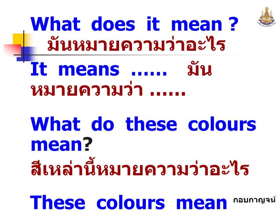 กอบกาญจน์ สุทธิสม What does it mean ? มันหมายความว่าอะไร It means …… มัน หมายความว่า …… What do these colours mean? สีเหล่านี้หมายความว่าอะไร These co