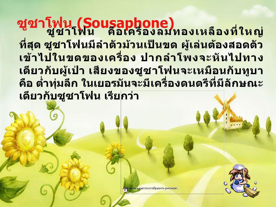ซูซาโฟน (Sousaphone) ซูซาโฟน คือเครื่องลมทองเหลืองที่ใหญ่ ที่สุด ซูซาโฟนมีลำตัวม้วนเป็นขด ผู้เล่นต้องสอดตัว เข้าไปในขดของเครื่อง ปากลำโพงจะหันไปทาง เด