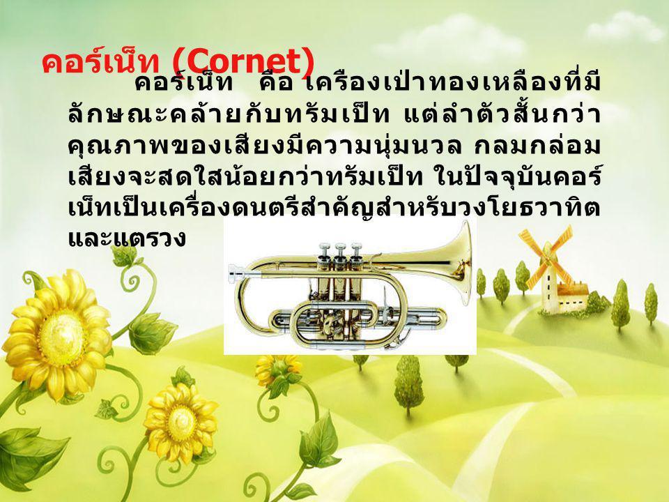 ทรัมเป็ท (Trumpet) ทรัมเป็ท คือเครืองดนตรีที่จัดอยู่ในประเภทเครื่องลมทองเหลือง กำพวดสำหรับเป่า เป็นท่อโลหะ ปลายบานคล้ายรูปถ้วย ท่อ ลมทรัมกลวงยาวเท่ากันปลายออกเป็นลำโพง ทรัมเป็ทมีลูกสูบ 3 สูบ สำหรับใช้เปลี่ยนความยาว ของท่อลม บางครั้งกดเพียง 1 นิ้ว บางครั้ง 2 นิ้ว หรือ 3 นิ้วพร้อมกัน เสียงของทรัมเป็ทจะเป็นเสียง ที่มีพลังและดังเจิดจ้า