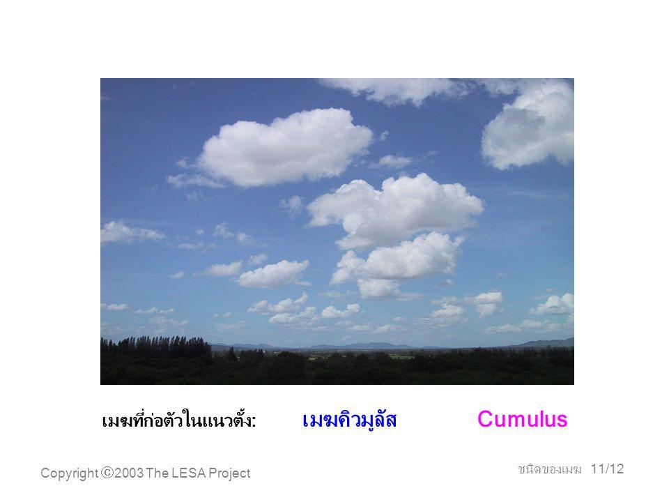 Copyright  2003 The LESA Project ชนิดของเมฆ 11/12 เมฆที่ก่อตัวในแนวตั้ง: เมฆคิวมูลัส Cumulus