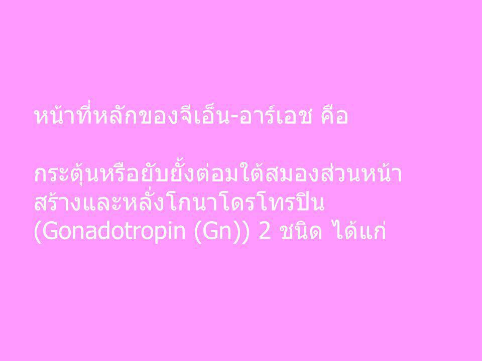 หน้าที่หลักของจีเอ็น-อาร์เอช คือ กระตุ้นหรือยับยั้งต่อมใต้สมองส่วนหน้า สร้างและหลั่งโกนาโดรโทรปิน (Gonadotropin (Gn)) 2 ชนิด ได้แก่