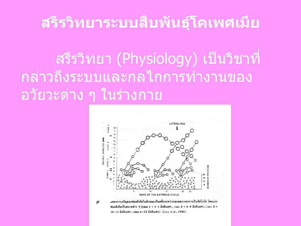 สรีรวิทยาระบบสืบพันธุ์โคเพศเมีย สรีรวิทยา (Physiology) เป็นวิชาที่ กล่าวถึงระบบและกลไกการทำงานของ อวัยวะต่าง ๆ ในร่างกาย