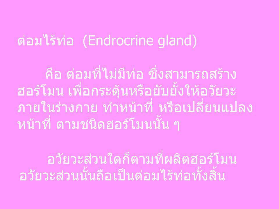 ต่อมไร้ท่อ (Endrocrine gland) คือ ต่อมที่ไม่มีท่อ ซึ่งสามารถสร้าง ฮอร์โมน เพื่อกระตุ้นหรือยับยั้งให้อวัยวะ ภายในร่างกาย ทำหน้าที่ หรือเปลี่ยนแปลง หน้า