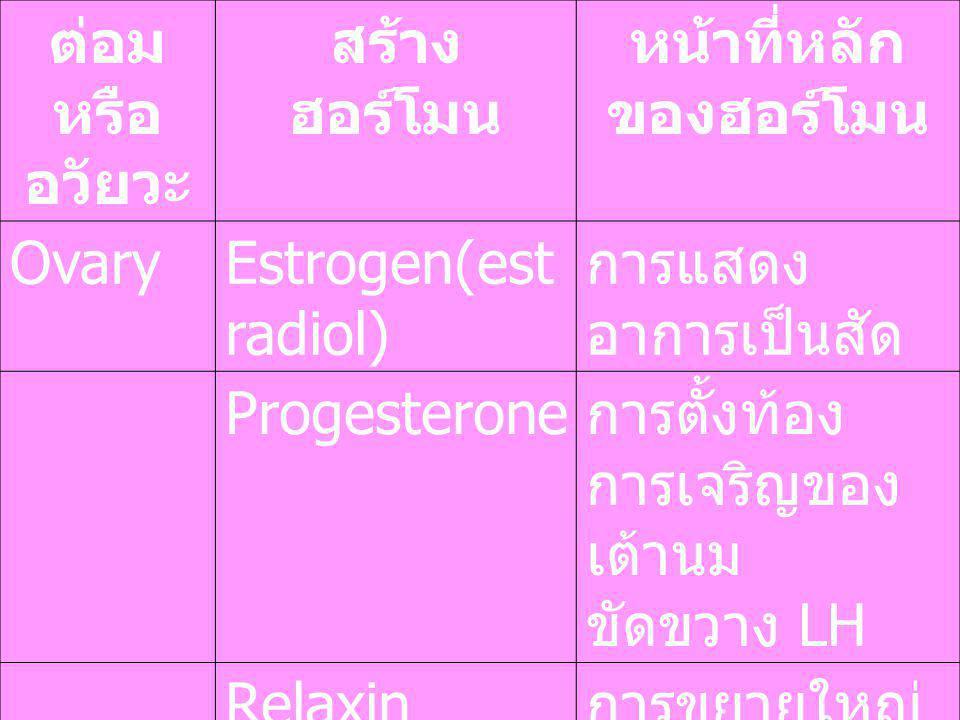 ต่อม หรือ อวัยวะ สร้าง ฮอร์โมน หน้าที่หลัก ของฮอร์โมน OvaryEstrogen(est radiol) การแสดง อาการเป็นสัด Progesterone การตั้งท้อง การเจริญของ เต้านม ขัดขว