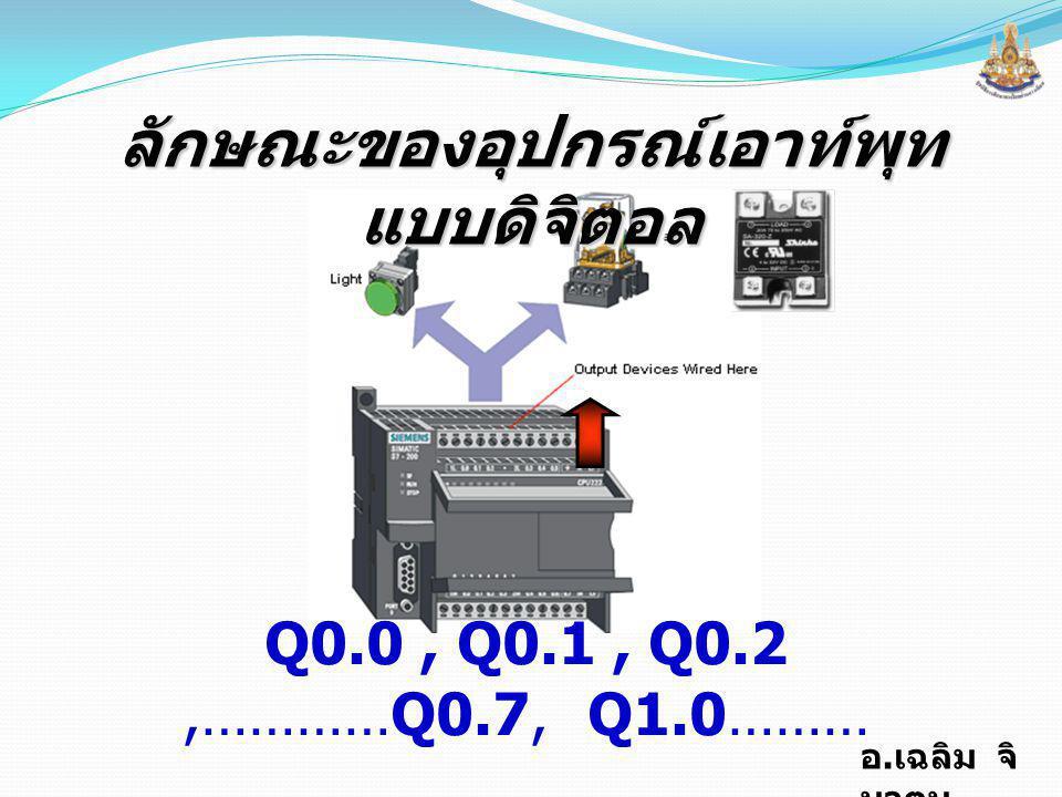 อ.เฉลิม จิ นาตุน  Relay Output ใช้ได้ทั้ง AC. และ DC.