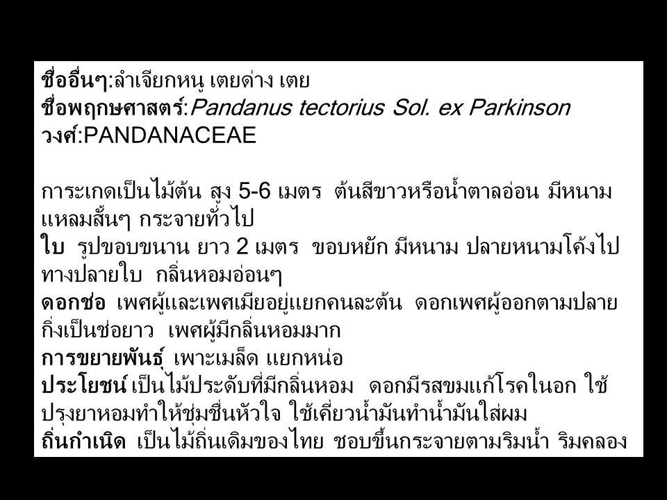 ชื่ออื่นๆ:ลำเจียกหนู เตยด่าง เตย ชื่อพฤกษศาสตร์:Pandanus tectorius Sol. ex Parkinson วงศ์:PANDANACEAE การะเกดเป็นไม้ต้น สูง 5-6 เมตร ต้นสีขาวหรือน้ำตา