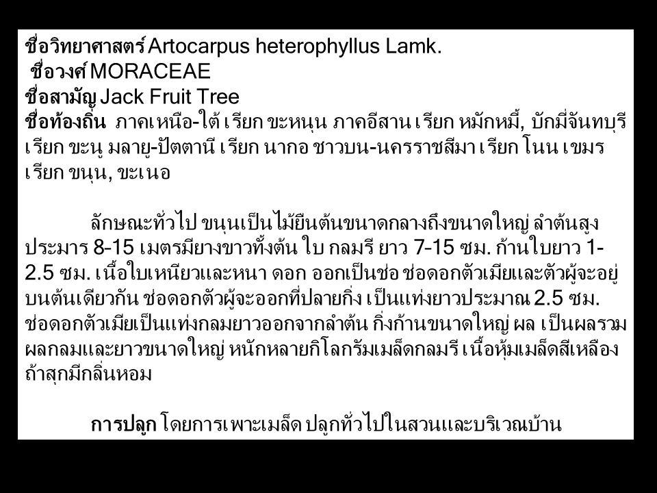 ชื่อวิทยาศาสตร์ Artocarpus heterophyllus Lamk. ชื่อวงศ์ MORACEAE ชื่อสามัญ Jack Fruit Tree ชื่อท้องถิ่น ภาคเหนือ-ใต้ เรียก ขะหนุน ภาคอีสาน เรียก หมักห