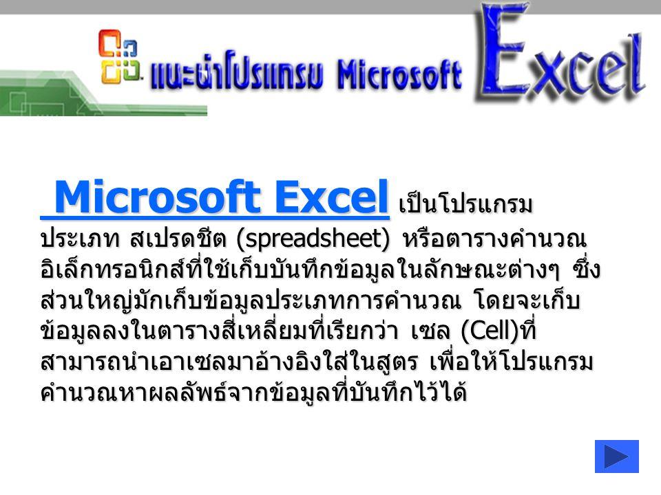 Microsoft Excel เป็นโปรแกรม ประเภท สเปรดชีต (spreadsheet) หรือตารางคำนวณ อิเล็กทรอนิกส์ที่ใช้เก็บบันทึกข้อมูลในลักษณะต่างๆ ซึ่ง ส่วนใหญ่มักเก็บข้อมูลป