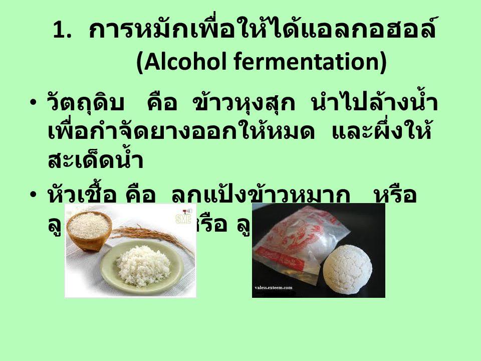 เชื้อจุลินทรีย์ในลูกแป้ง เป็นเชื้อผสม ประกอบด้วย ยีสต์ Candida Saccharomyces