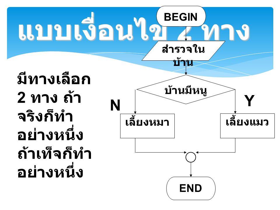 แบบเงื่อนไข 2 ทาง มีทางเลือก 2 ทาง ถ้า จริงก็ทำ อย่างหนึ่ง ถ้าเท็จก็ทำ อย่างหนึ่ง BEGIN สำรวจใน บ้าน บ้านมีหนู เลี้ยงแมว END Y N เลี้ยงหมา