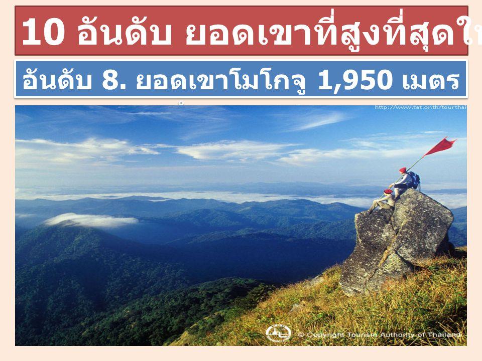10 อันดับ ยอดเขาที่สูงที่สุดในประเทศไทย อันดับ 8. ยอดเขาโมโกจู 1,950 เมตร กำแพงเพชร