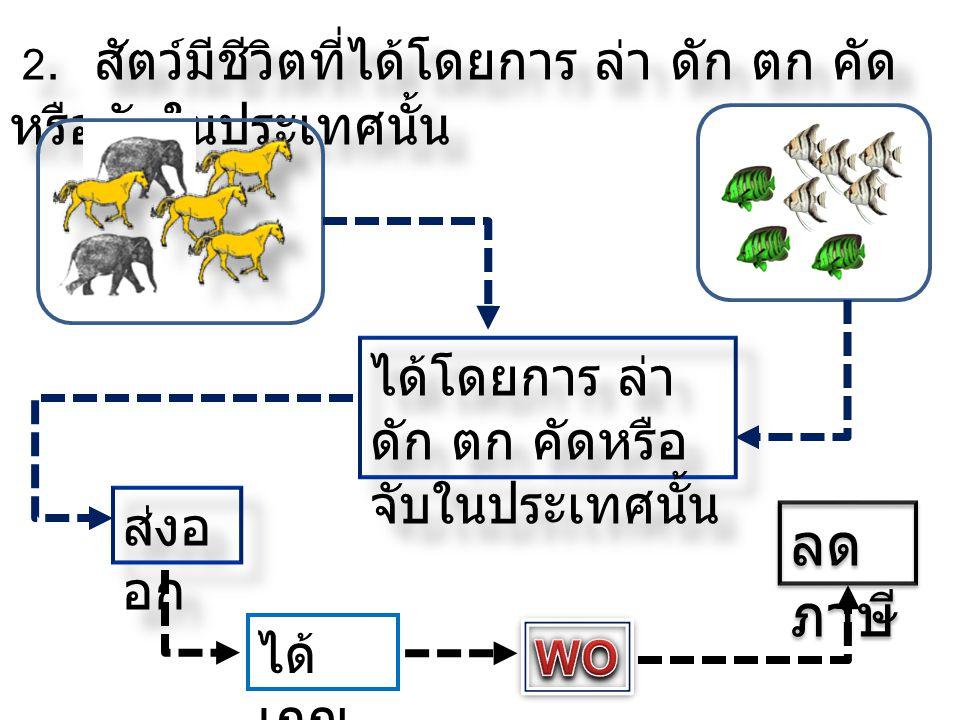 2. สัตว์มีชีวิตที่ได้โดยการ ล่า ดัก ตก คัด หรือจับในประเทศนั้น ได้โดยการ ล่า ดัก ตก คัดหรือ จับในประเทศนั้น ส่งอ อก ลด ภาษี ได้ เกณ ฑ์