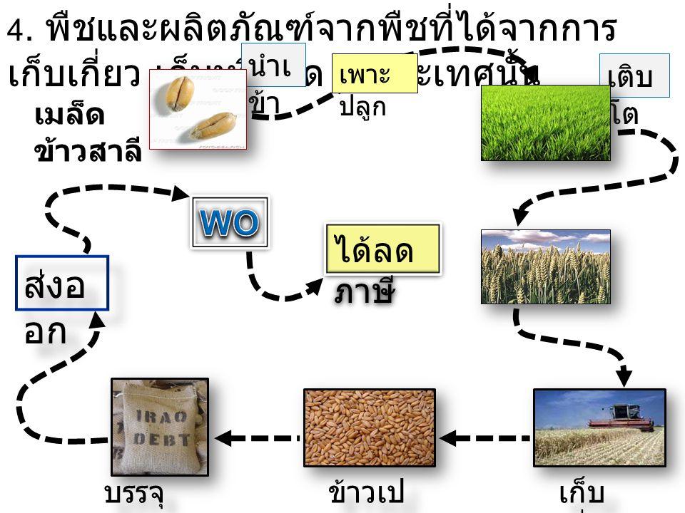 4. พืชและผลิตภัณฑ์จากพืชที่ได้จากการ เก็บเกี่ยว เก็บหรือคัด ในประเทศนั้น นำเ ข้า เติบ โต เมล็ด ข้าวสาลี เพาะ ปลูก เก็บ เกี่ยว ข้าวเป ลือก บรรจุ กระสอบ