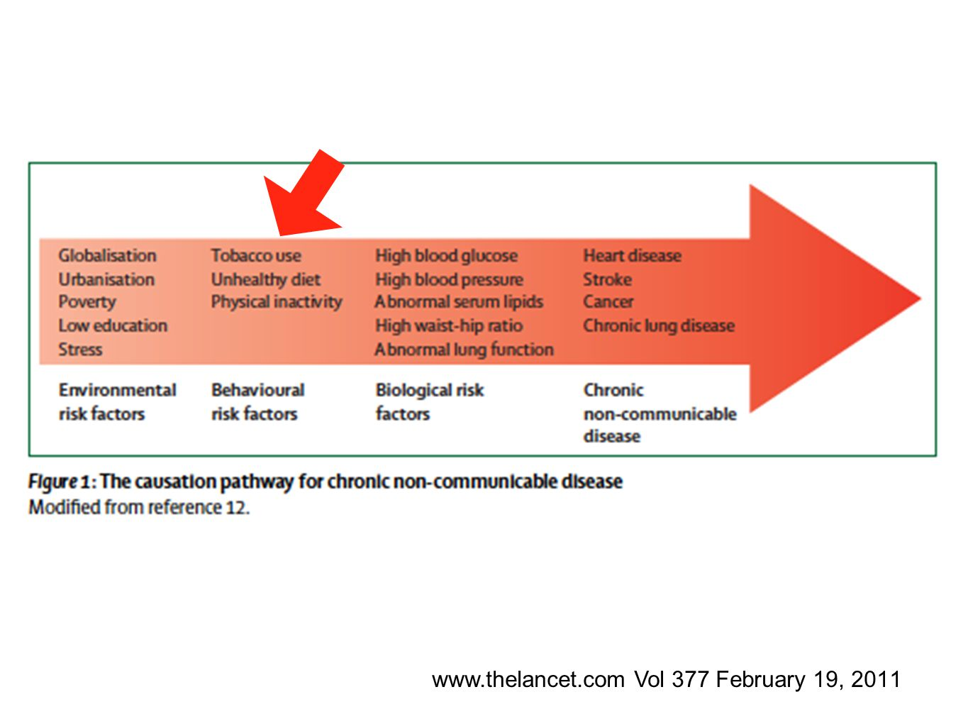 www.thelancet.com Vol 377 February 19, 2011