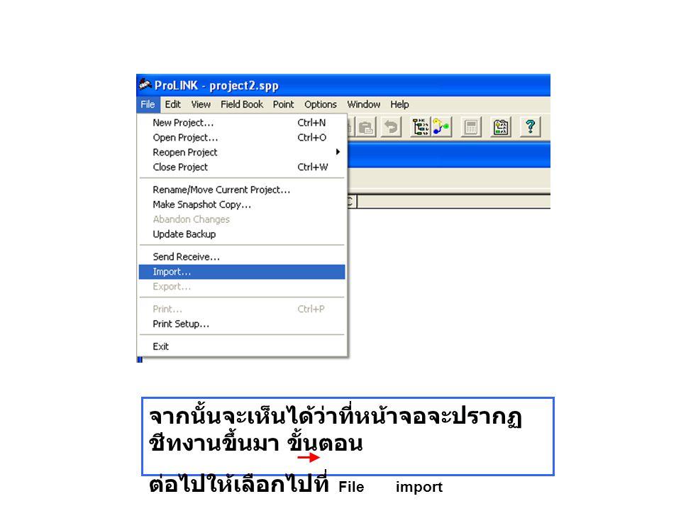 จากนั้นจะเห็นได้ว่าที่หน้าจอจะปรากฏ ชีทงานขึ้นมา ขั้นตอน ต่อไปให้เลือกไปที่ File import