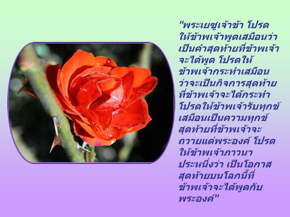 ไม่นานมานี้ ข้าพเจ้ารู้สึกอยากภาวนาต่อพระเจ้า ด้วยคำภาวนาอย่างนี้ ซึ่งข้าพเจ้าขอแบ่งปันกับท่าน