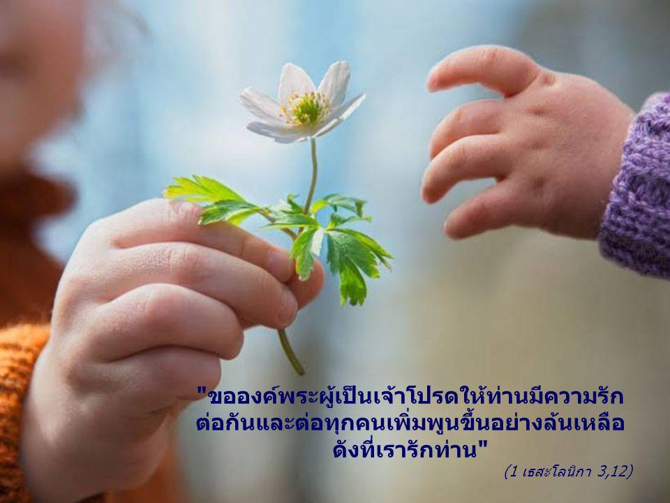 ขอองค์พระผู้เป็นเจ้าโปรดให้ท่านมีความรัก ต่อกันและต่อทุกคนเพิ่มพูนขึ้นอย่างล้นเหลือ ดังที่เรารักท่าน (1 เธสะโลนิกา 3,12)