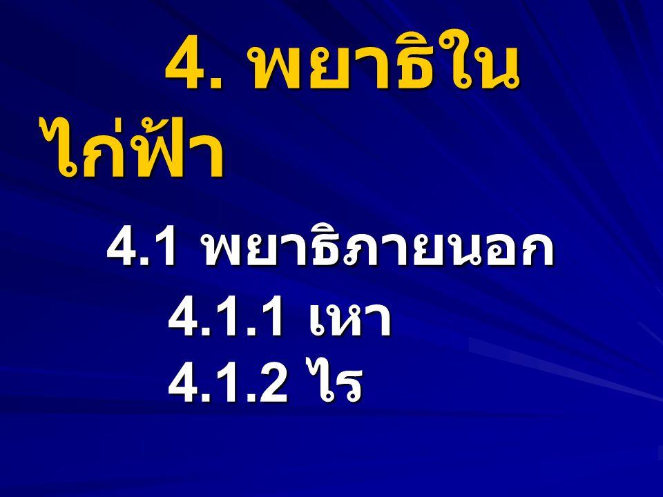 4.พยาธิใน ไก่ฟ้า 4.1 พยาธิภายนอก 4.1.1 เหา 4.1.2 ไร 4.