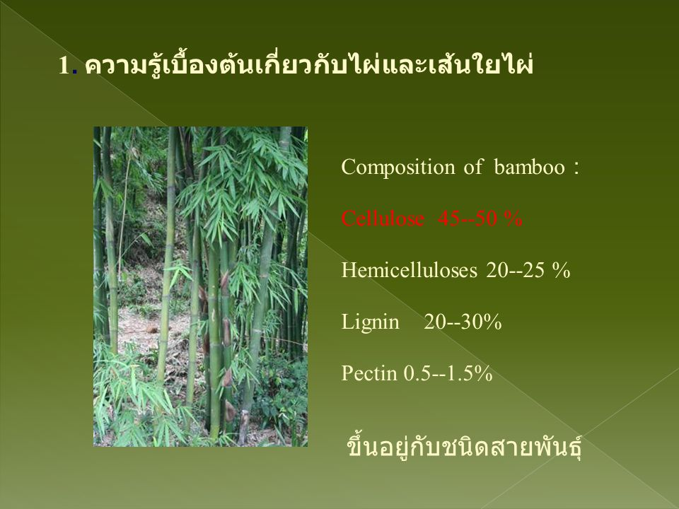 World bamboo production and consumption map