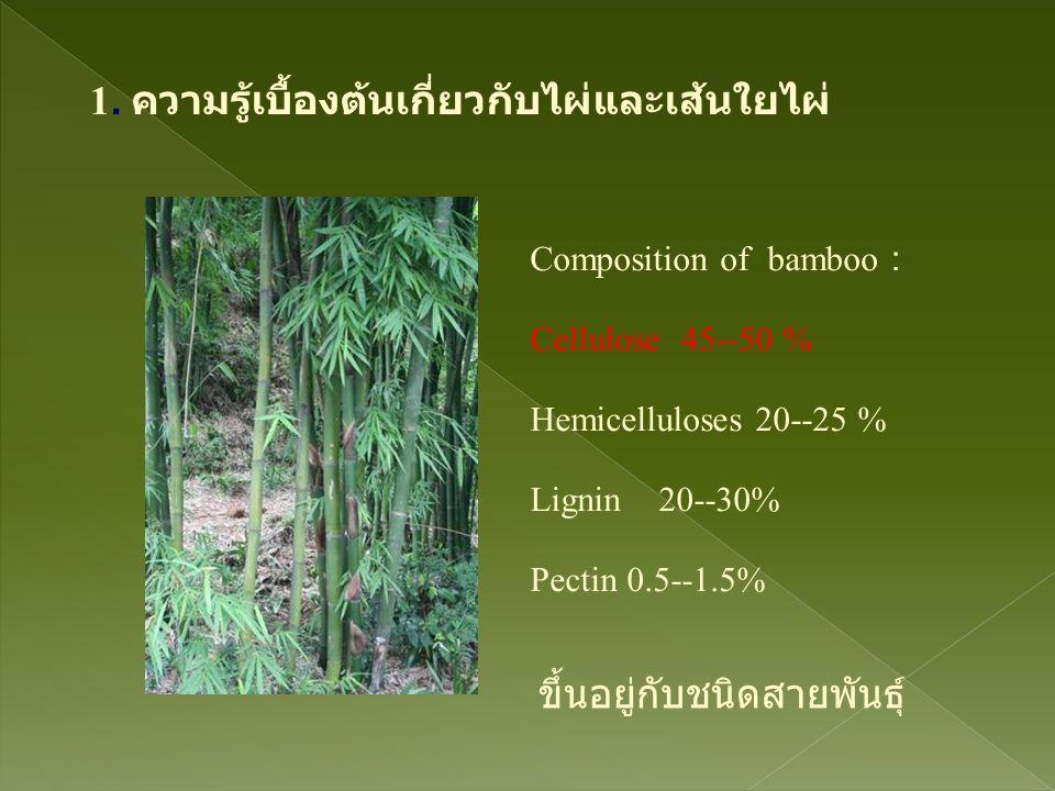1. ความรู้เบื้องต้นเกี่ยวกับไผ่และเส้นใยไผ่ Composition of bamboo : Cellulose 45--50 % Hemicelluloses 20--25 % Lignin 20--30% Pectin 0.5--1.5% ขึ้นอยู