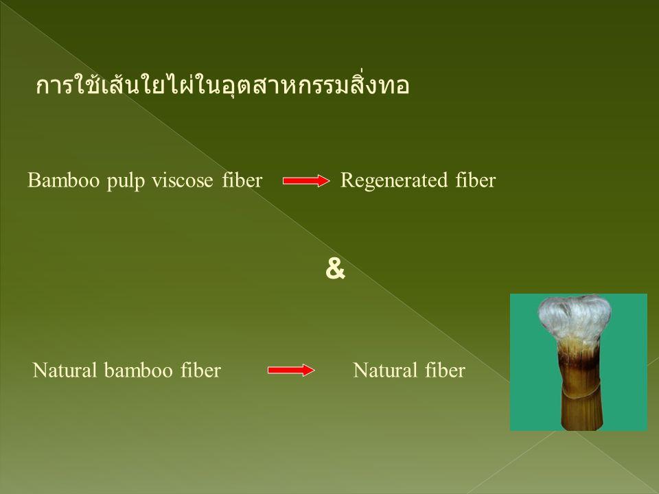 Bamboo pulp viscose fiber Regenerated fiber การใช้เส้นใยไผ่ในอุตสาหกรรมสิ่งทอ & Natural bamboo fiber Natural fiber
