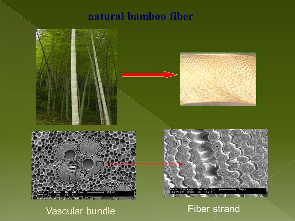 natural bamboo fiber Vascular bundle Fiber strand