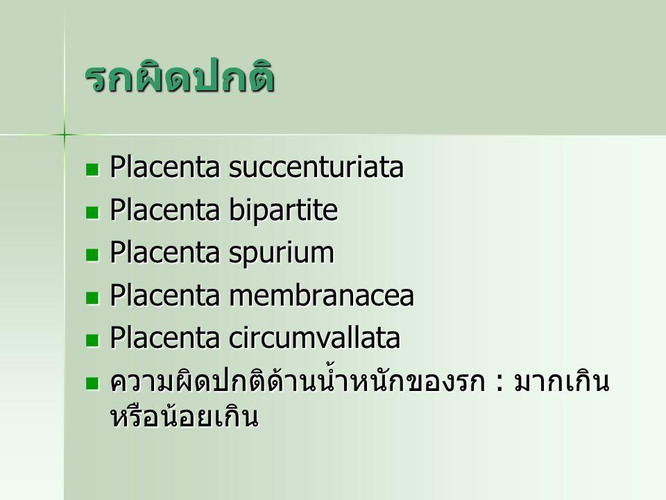 รกผิดปกติ Placenta succenturiata Placenta succenturiata Placenta bipartite Placenta bipartite Placenta spurium Placenta spurium Placenta membranacea P