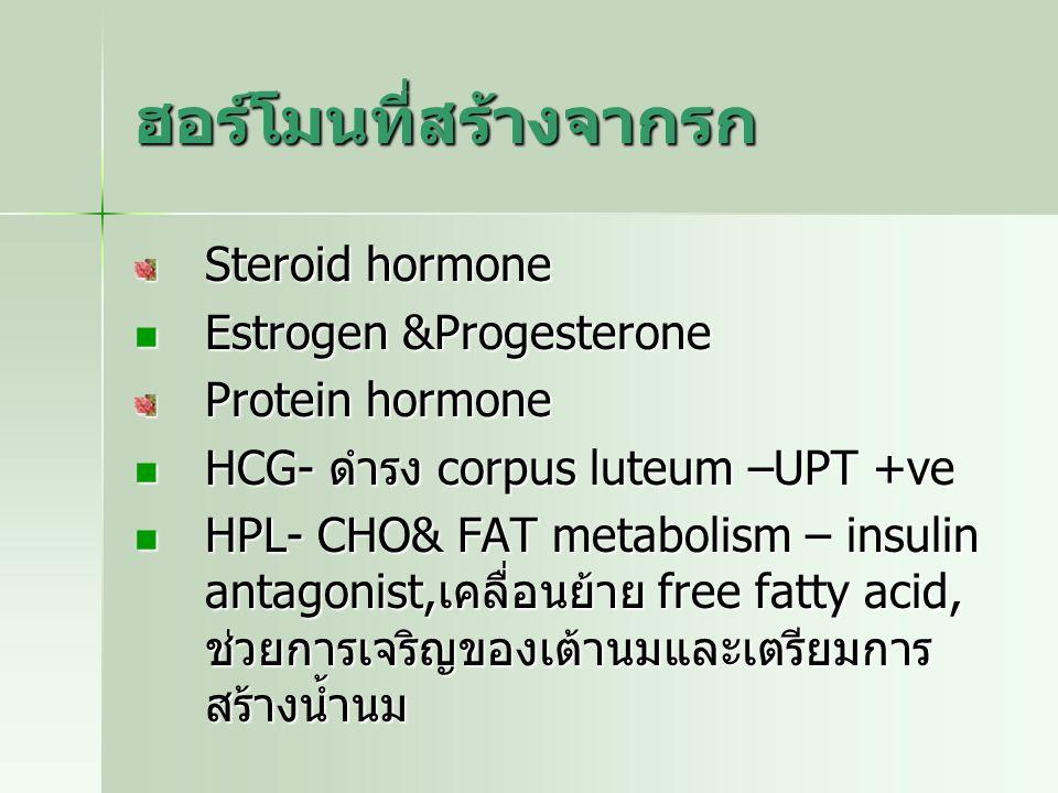 ฮอร์โมนที่สร้างจากรก Steroid hormone Estrogen &Progesterone Estrogen &Progesterone Protein hormone HCG- ดำรง corpus luteum –UPT +ve HCG- ดำรง corpus l