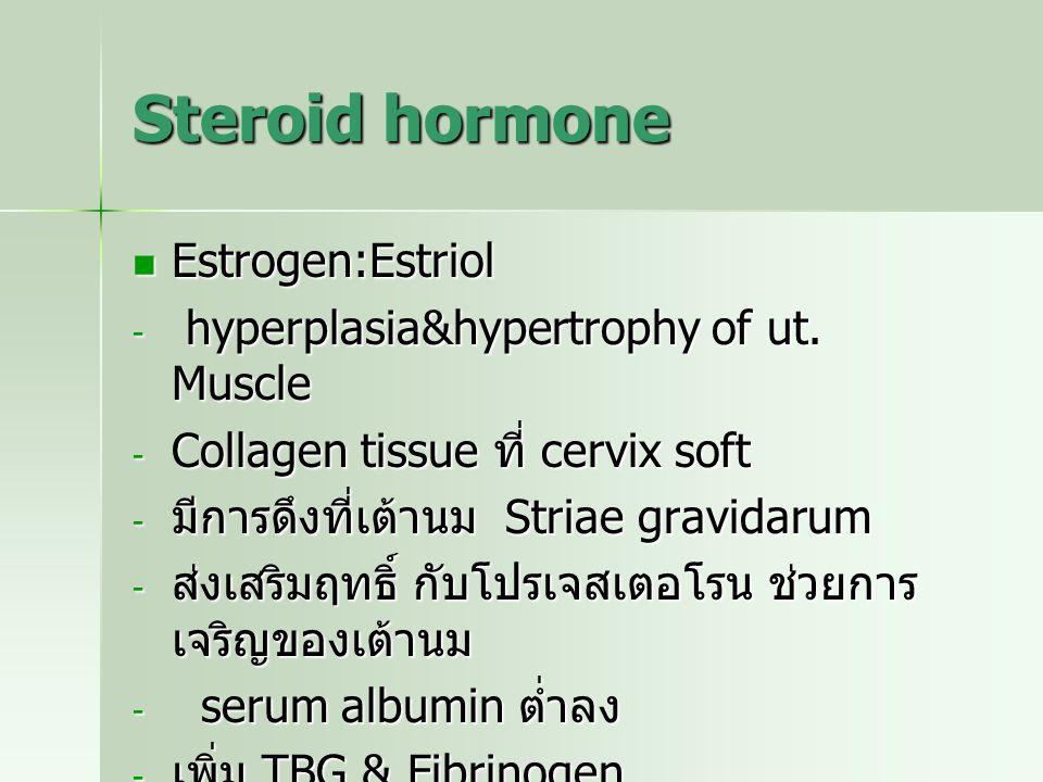 Steroid hormone Estrogen:Estriol Estrogen:Estriol - hyperplasia&hypertrophy of ut. Muscle - Collagen tissue ที่ cervix soft - มีการดึงที่เต้านม Striae