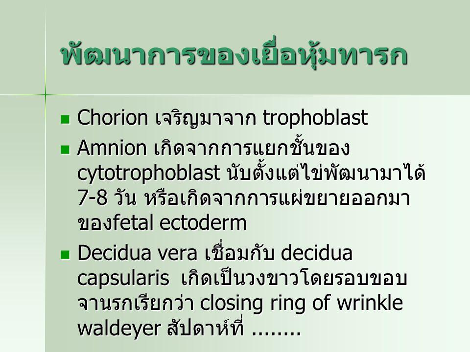 พัฒนาการของเยื่อหุ้มทารก Chorion เจริญมาจาก trophoblast Chorion เจริญมาจาก trophoblast Amnion เกิดจากการแยกชั้นของ cytotrophoblast นับตั้งแต่ไข่พัฒนาม