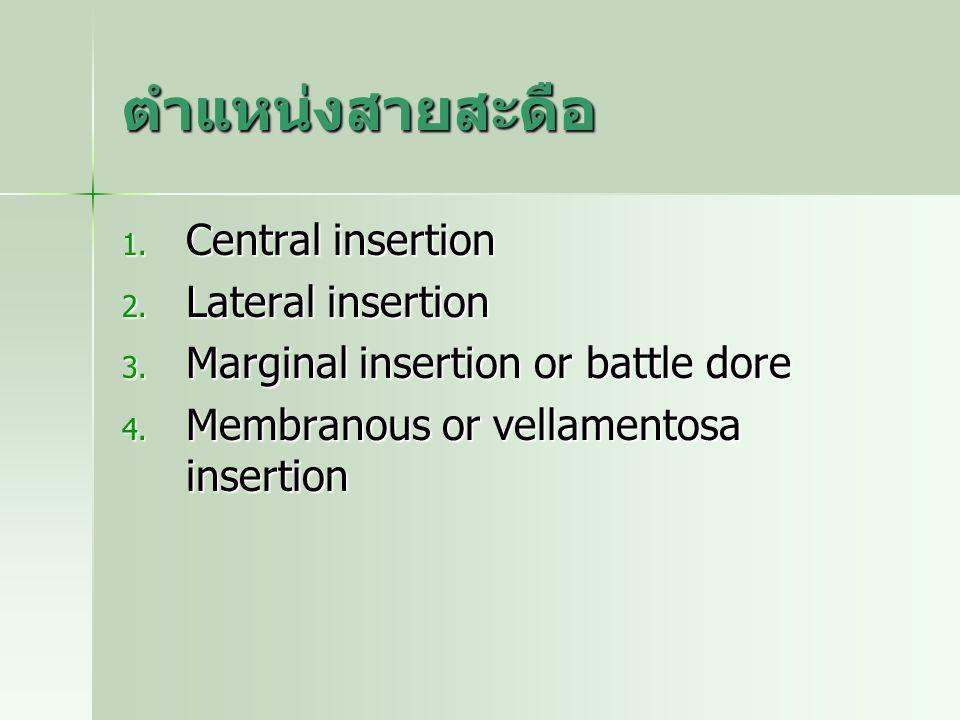 ตำแหน่งสายสะดือ 1. Central insertion 2. Lateral insertion 3. Marginal insertion or battle dore 4. Membranous or vellamentosa insertion