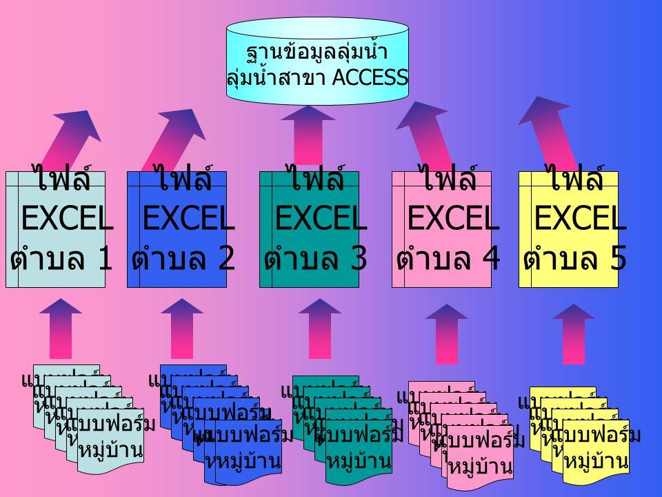 การวิเคราะห์ข้อมูลใน access 1