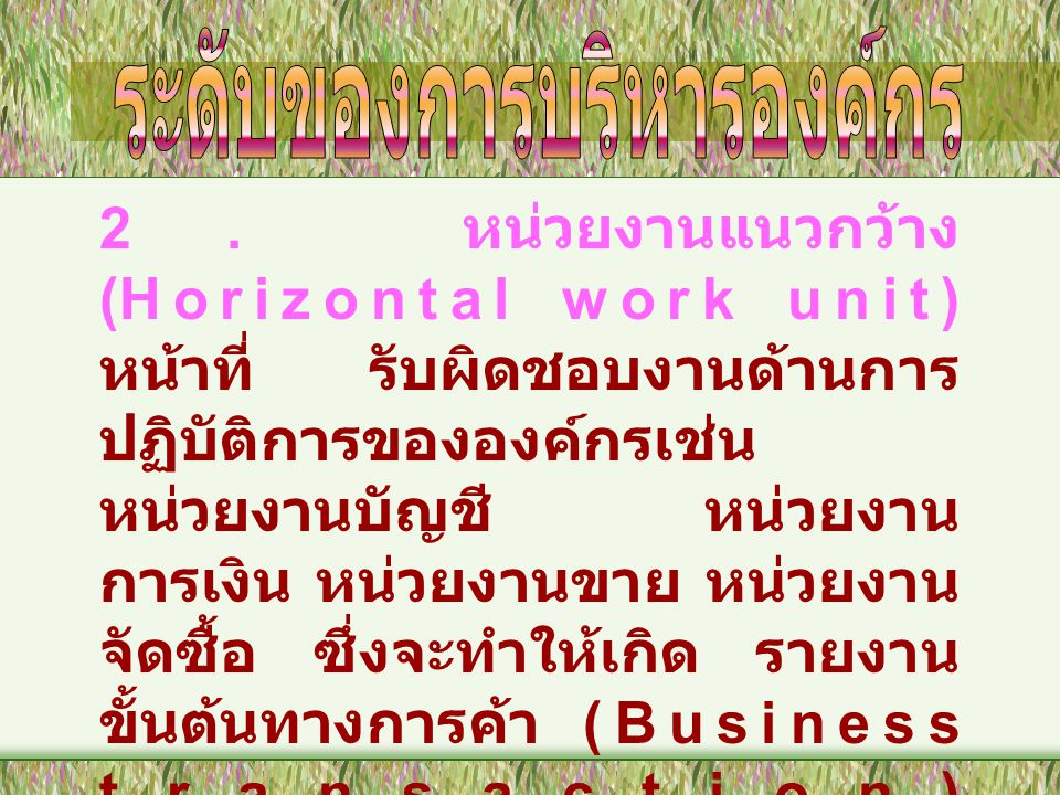 2. หน่วยงานแนวกว้าง (Horizontal work unit) หน้าที่ รับผิดชอบงานด้านการ ปฏิบัติการขององค์กรเช่น หน่วยงานบัญชี หน่วยงาน การเงิน หน่วยงานขาย หน่วยงาน จัด