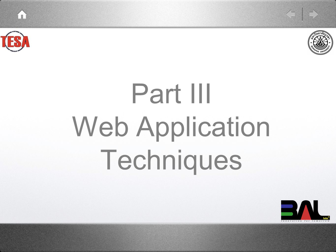 Part III Web Application Techniques
