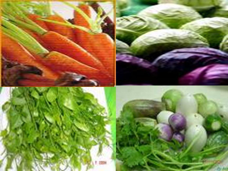 โภชนบัญญัติ 9 ประการ 3. กินพืชผักให้ มาก และกิน ผลไม้เป็น ประจำ