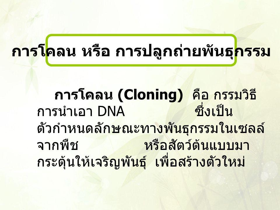 การโคลน (Cloning) คือ กรรมวิธี การนำเอา DNA ซึ่งเป็น ตัวกำหนดลักษณะทางพันธุกรรมในเซลล์ จากพืช หรือสัตว์ต้นแบบมา กระตุ้นให้เจริญพันธุ์ เพื่อสร้างตัวใหม